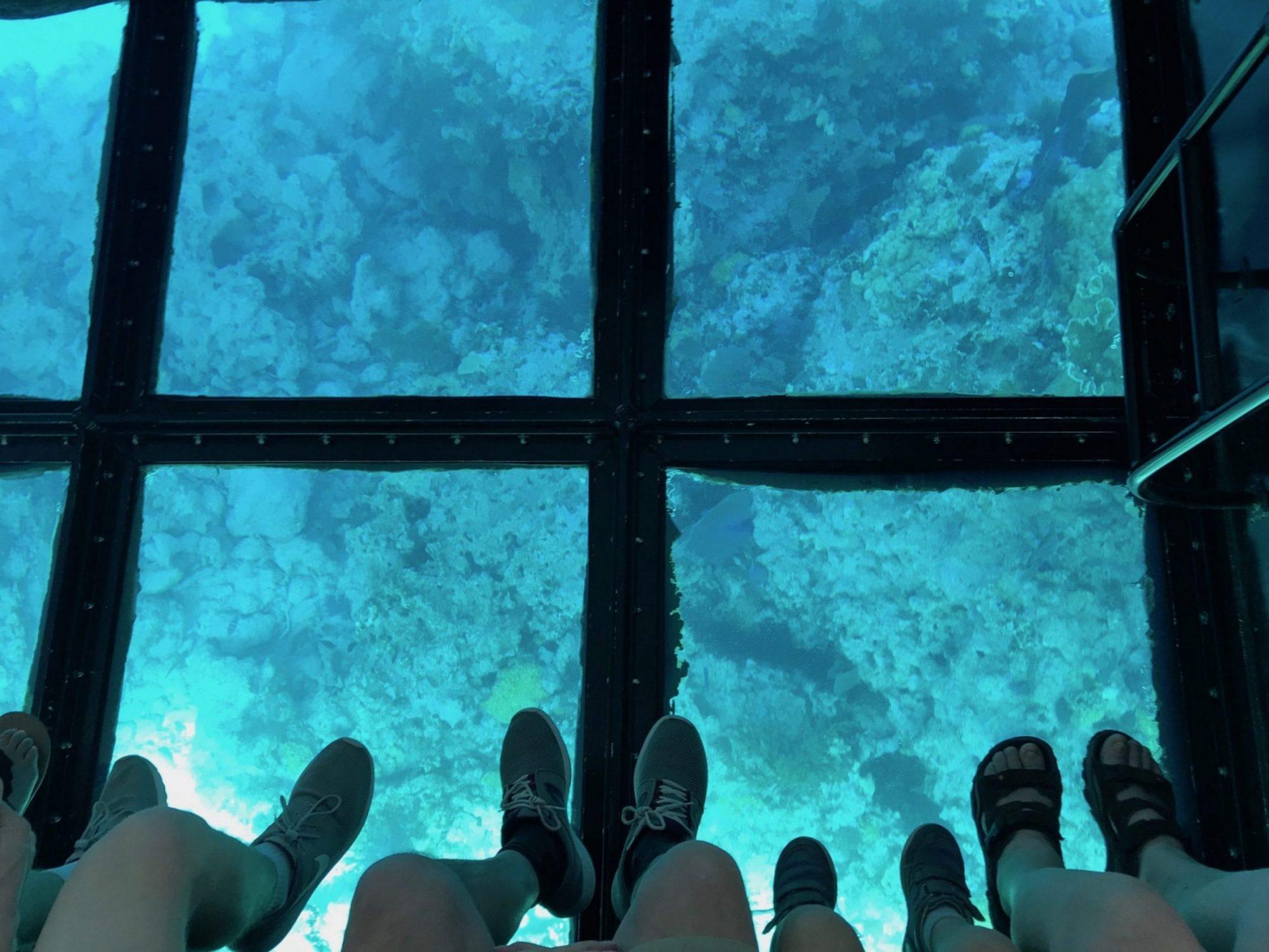 famille enfants miami en famille floride key largo bateau a fond de verre barrière de corail john pennekamp miami off road