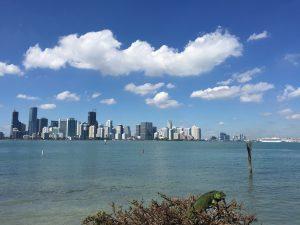 notre offre Miami Off Road visite guidée du Miami insolite