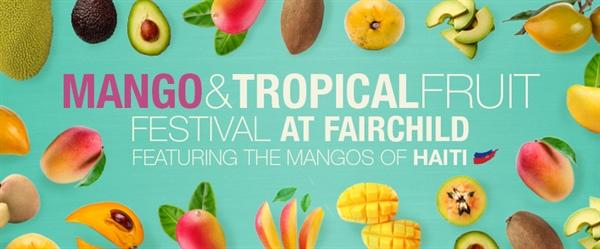 été 2018 a miami mange festival fairchild tropical botanic garden festival de la mangue que faire a miami pendant l'été 2018 agenda des événements blog miami off road