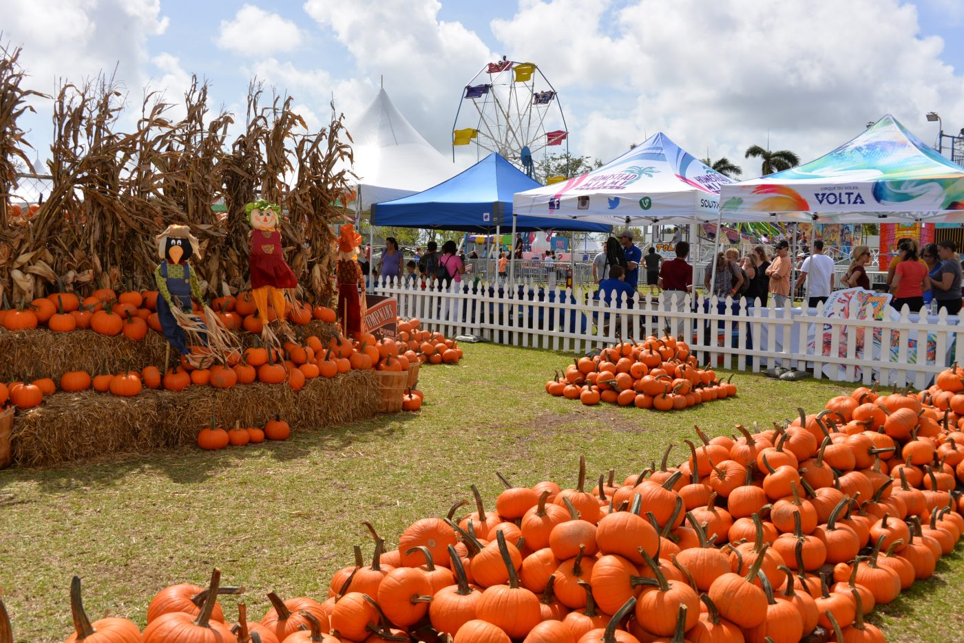 octobre coconut grove pumpkin patch festival que faire en octobre a miami attractions a miami bons plans miami bons plans floride tarifs réduits miami blog miami off road