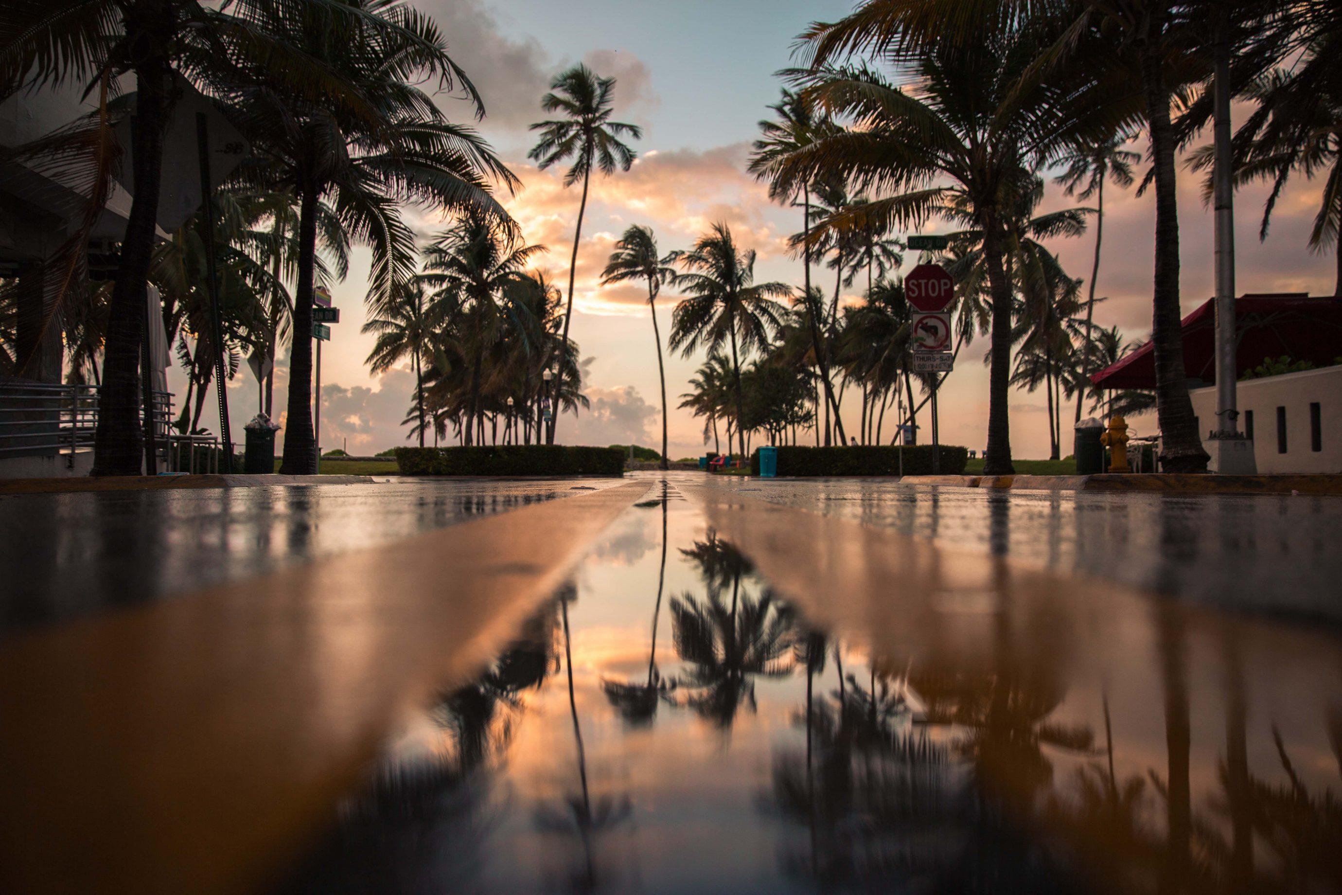 saison quand visiter Miami a quelle saison visiter Miami quelle saison pour visiter la floride visites guidées de miami en français miami off road