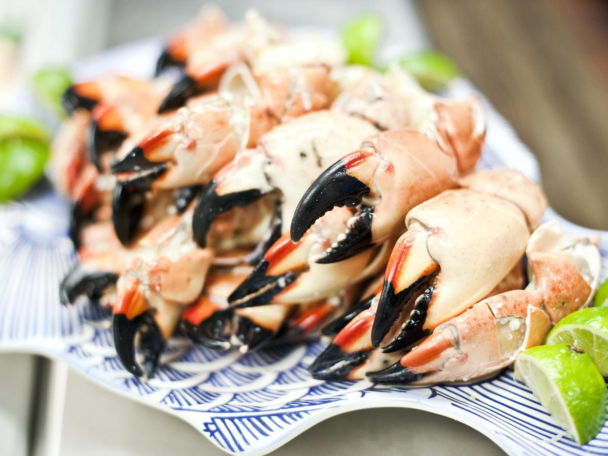 octobre south florida seafood festival stone crab fruits de mer que faire en octobre a miami attractions a miami bons plans miami bons plans floride tarifs réduits miami blog miami off road