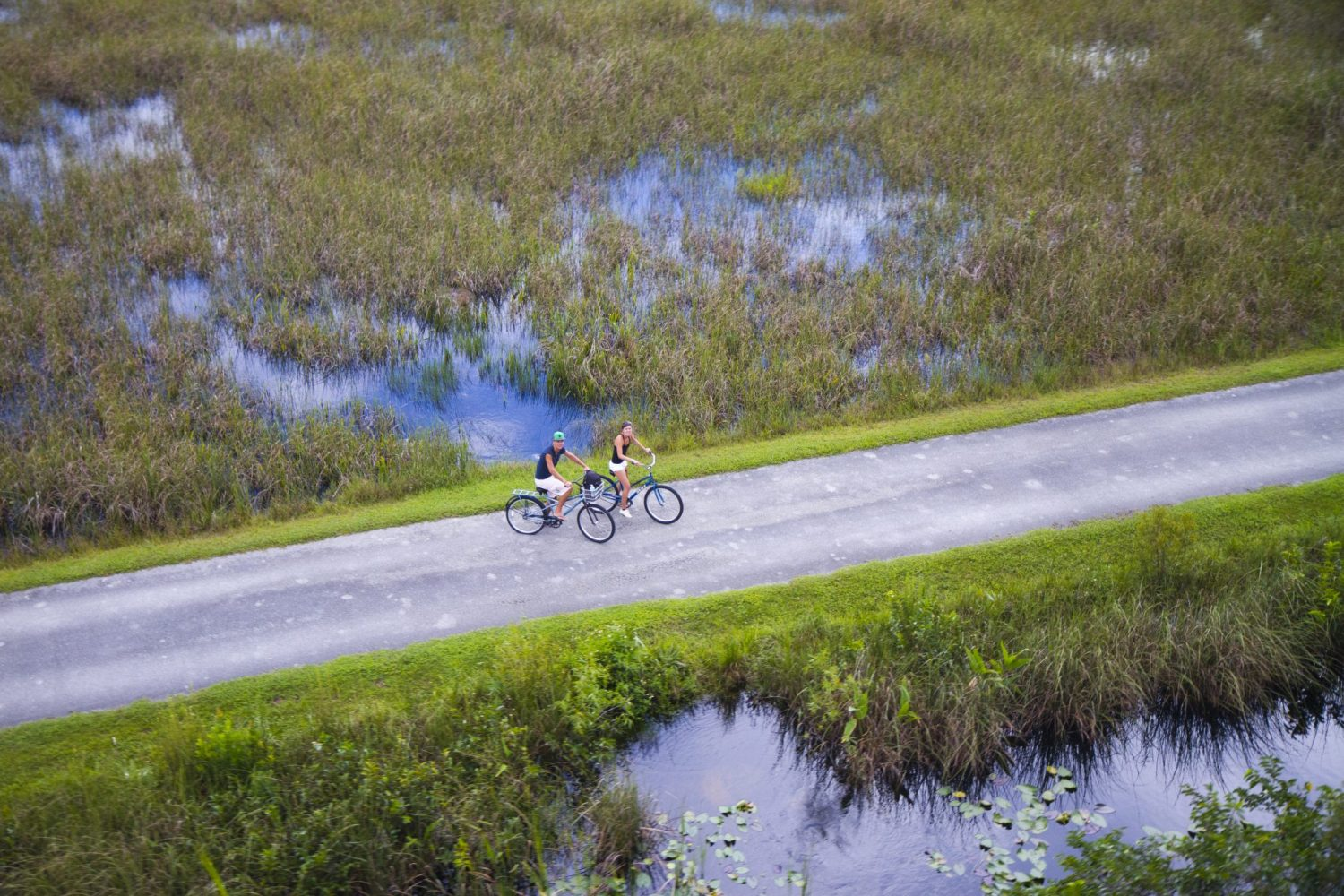 everglades visiter les everglades aller aux everglades alligator shark valley vélo blog miami off road