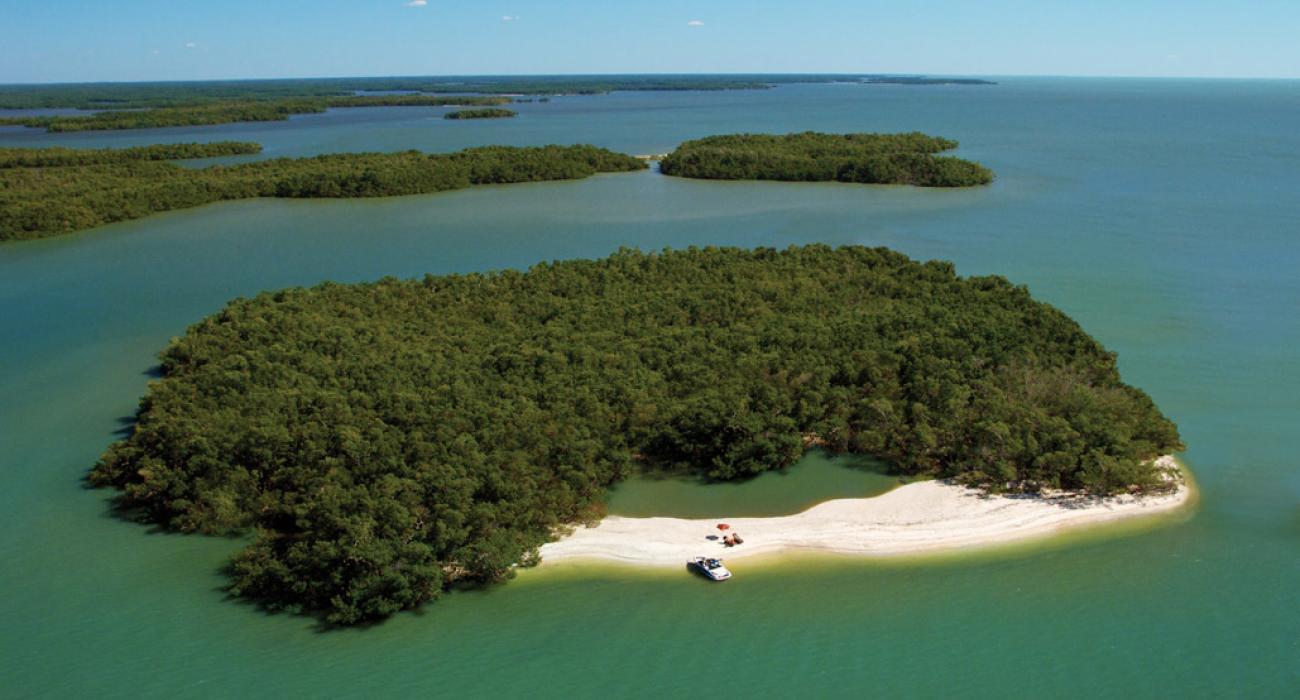 everglades visiter les everglades aller aux everglades sortie en bateau ten thousand islands dix-mille iles plages sauvages blog miami off road