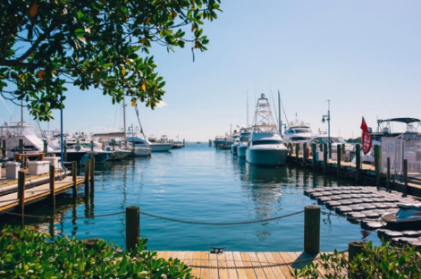 vue monty's raw bar coconut grove marina restaurants avec vue table avec vue skyline de Miami vue mer plein les yeux blog miami off road