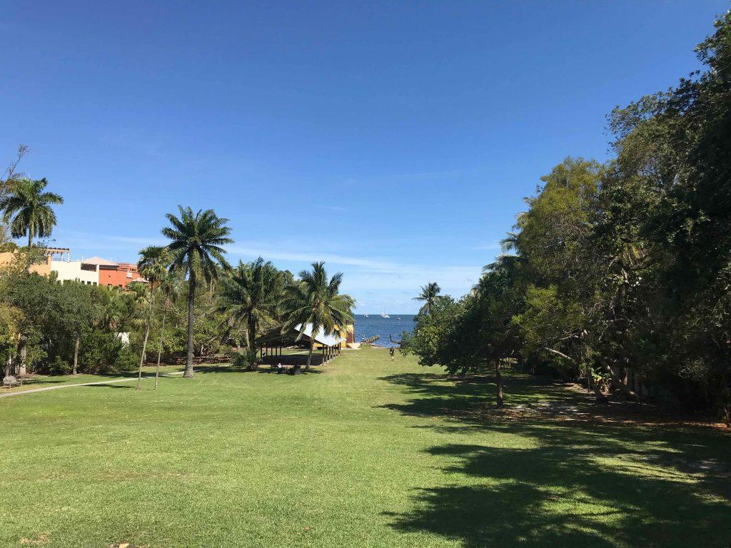 barnaclejardin - gouter coconut grove et little havana - miamioffroad